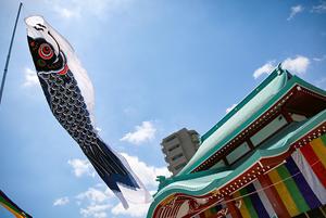 鯉のぼりご奉納イメージ